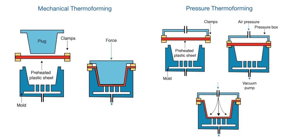 Thermoforming plastics