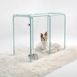 Pet Retail Displays